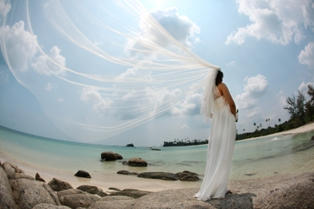 wedding bintan004