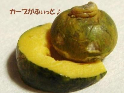 カボチャ〔生〕スライス+かぼちゃ達③