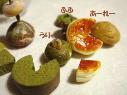 チーズケーキ〔スフレ〕&バウム抹茶+かぼちゃ達