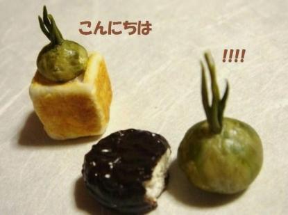 チョコパイ〔ふつう黒〕エシャロット②