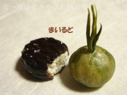 チョコパイ〔ふつう黒〕エシャロット
