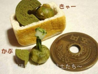 バームクーヘン〔抹茶〕・かぼちゃ達◎②