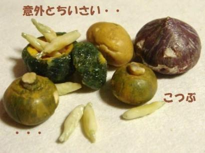 わかさぎの天ぷら・かぼちゃ達③