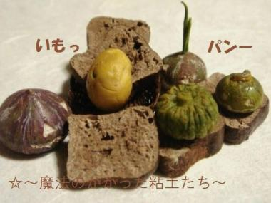 黒糖ブレッド〔旧〕かぼちゃ達④