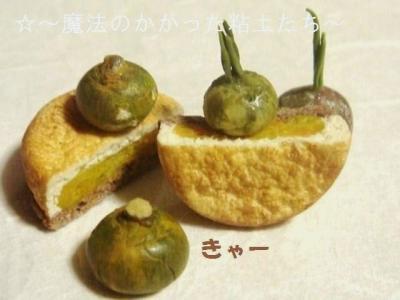 焼き菓子〔パンプキン中〕かぼちゃ達