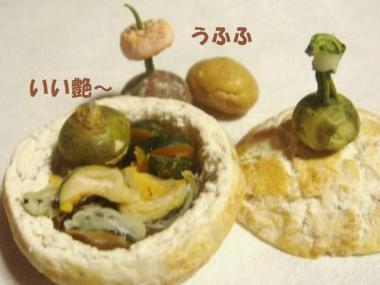 天ぷら〔カボチャ〕+玄米ばん器・かぼちゃ達②