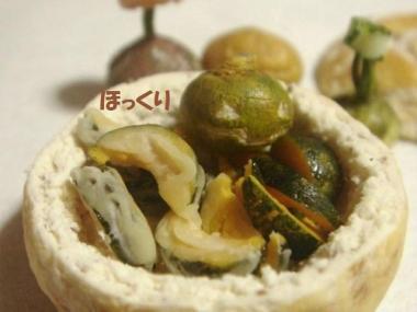 天ぷら〔カボチャ〕+玄米ばん器・かぼちゃ達