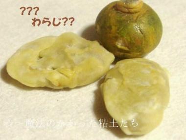天ぷら〔はす〕かぼちゃ達②