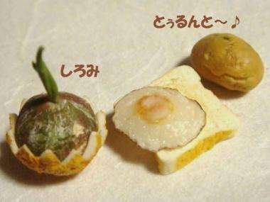 目玉焼きトースト・かぼちゃ達