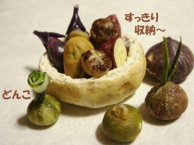 野菜たち〔3種・生〕玄米パンの器。かぼちゃ達