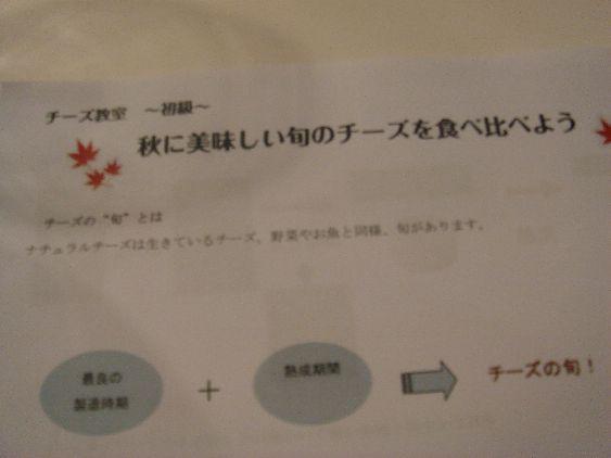 DSC08964_20101129152353.jpg