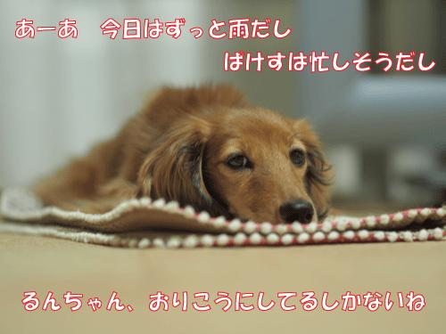 141015-01.jpg