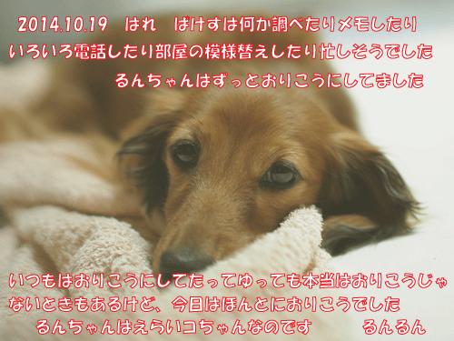 141019-001.jpg