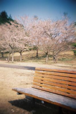 大川ふるさと公園