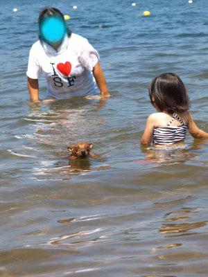 アクアとAちゃんの湖水浴@中田浜(猪苗代湖)