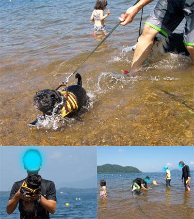 サンちゃんの湖水浴@中田浜(猪苗代湖)