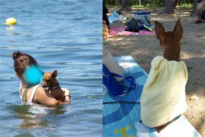 アクアの湖水浴@中田浜(猪苗代湖)