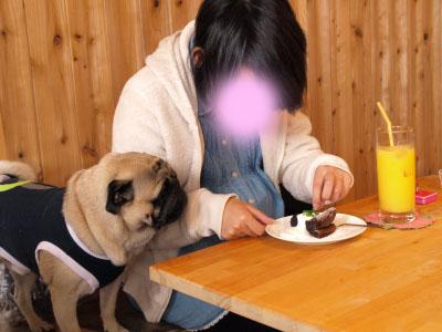 イ~君ママと大豆店長@Dais Cafe