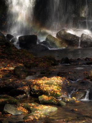 秋の達沢不動滝