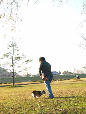 ロビルマスクさん&きらりちゃん@せせらぎ公園
