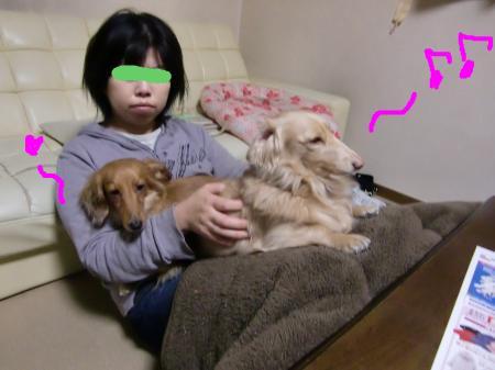 snap_ruruniko_201115224035.jpg