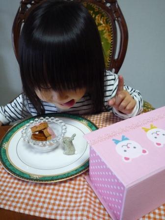 桜ガレットP1190681