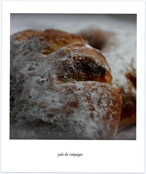 pain de campagne3