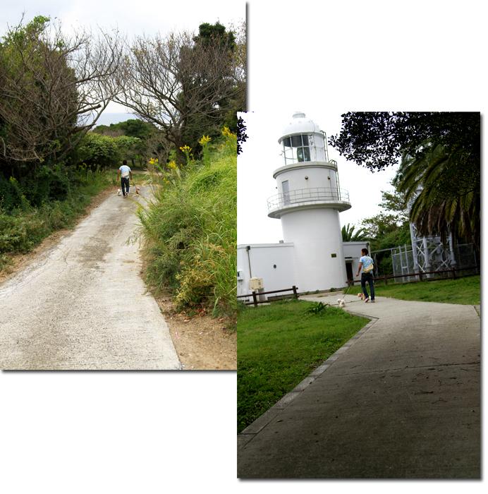 灯台に続く道