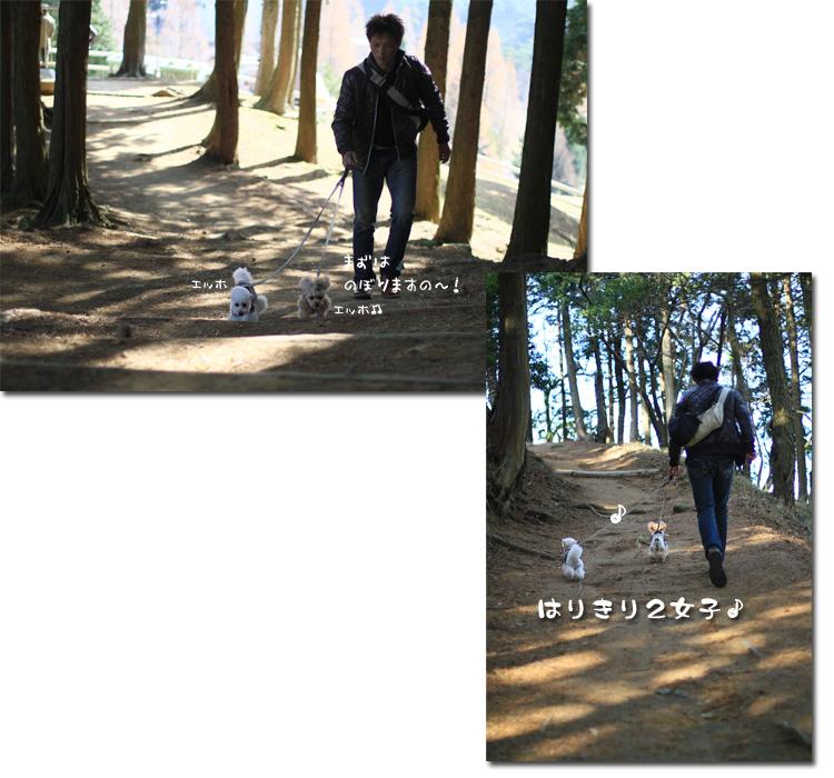 4_20101210174642.jpg