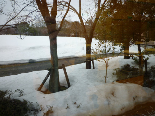 0302_合宿雪景色