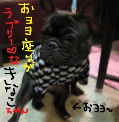 IMG_0970_convert_20101121194925.jpg
