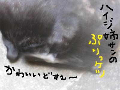IMG_1014_convert_20101121195109.jpg