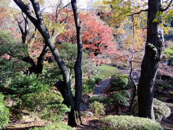 日本庭園6〔フリー写真〕