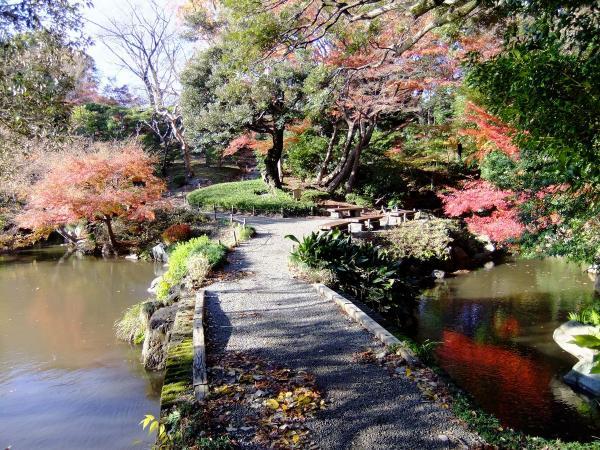 日本庭園12〔フリー写真〕