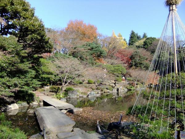 日本庭園14〔フリー写真〕