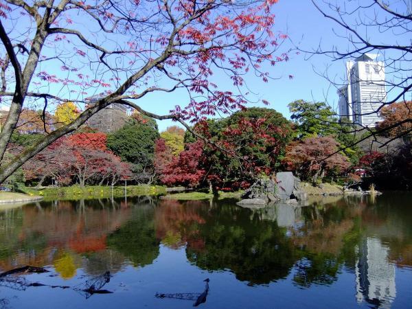 小石川後楽園2〔フリー写真〕