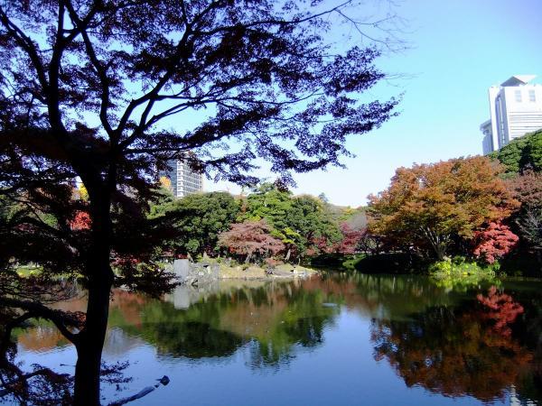 小石川後楽園5〔フリー写真〕