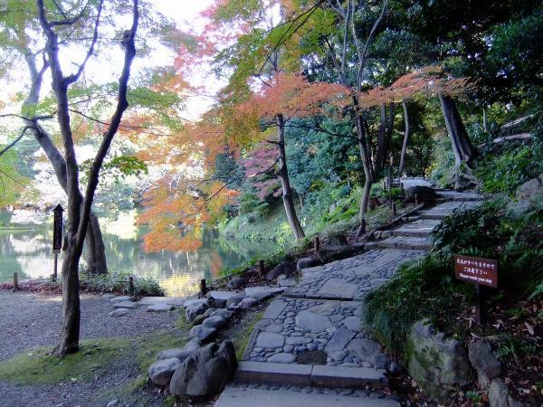 小石川後楽園7〔フリー写真〕