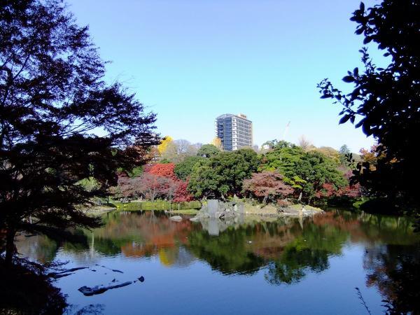 小石川後楽園8〔フリー写真〕
