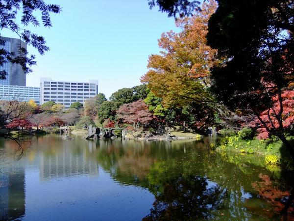 小石川後楽園13〔フリー写真〕
