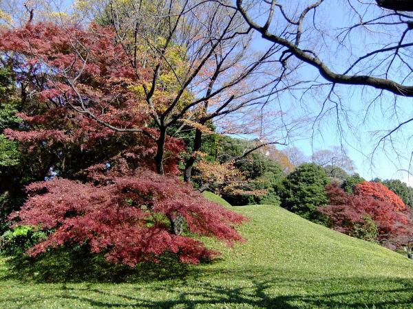小石川後楽園24〔フリー写真〕