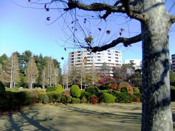 新宿御苑35〔フリー写真〕