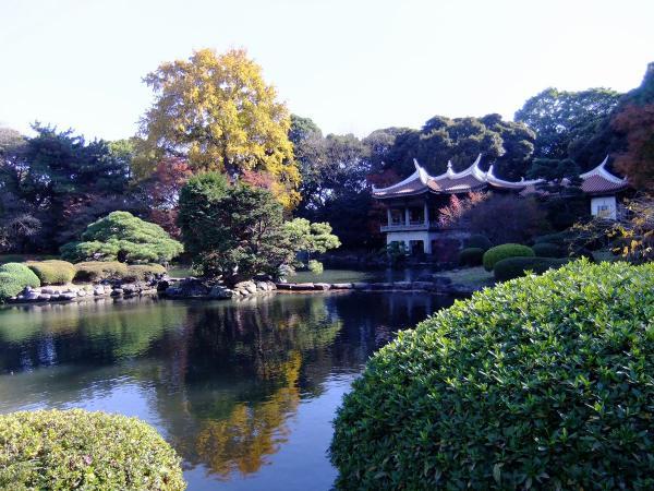新宿御苑15〔フリー写真〕