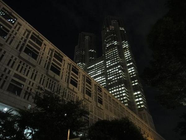東京都庁・新宿副都心1〔フリー写真〕