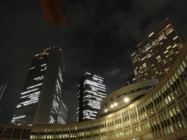 東京都庁・新宿副都心3〔フリー写真〕