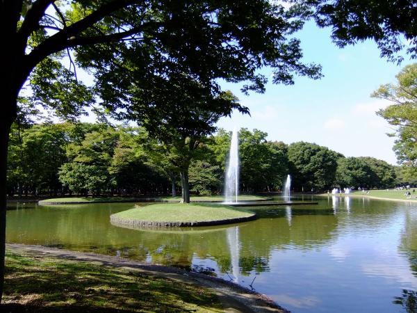 代々木公園 噴水広場1〔フリー写真〕