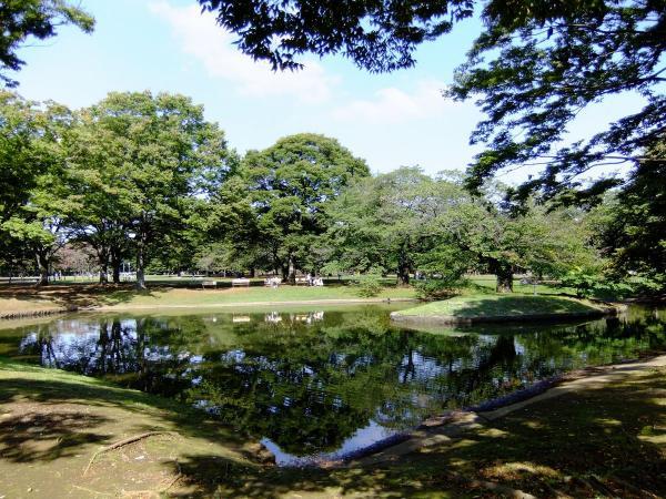 代々木公園 噴水広場7〔フリー写真〕