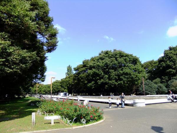 代々木公園9〔フリー写真〕