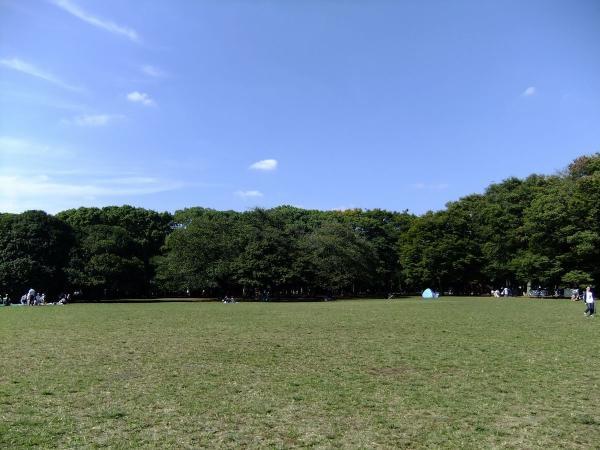 代々木公園11〔フリー写真〕