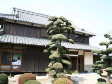 SAIのブログ-Y邸④
